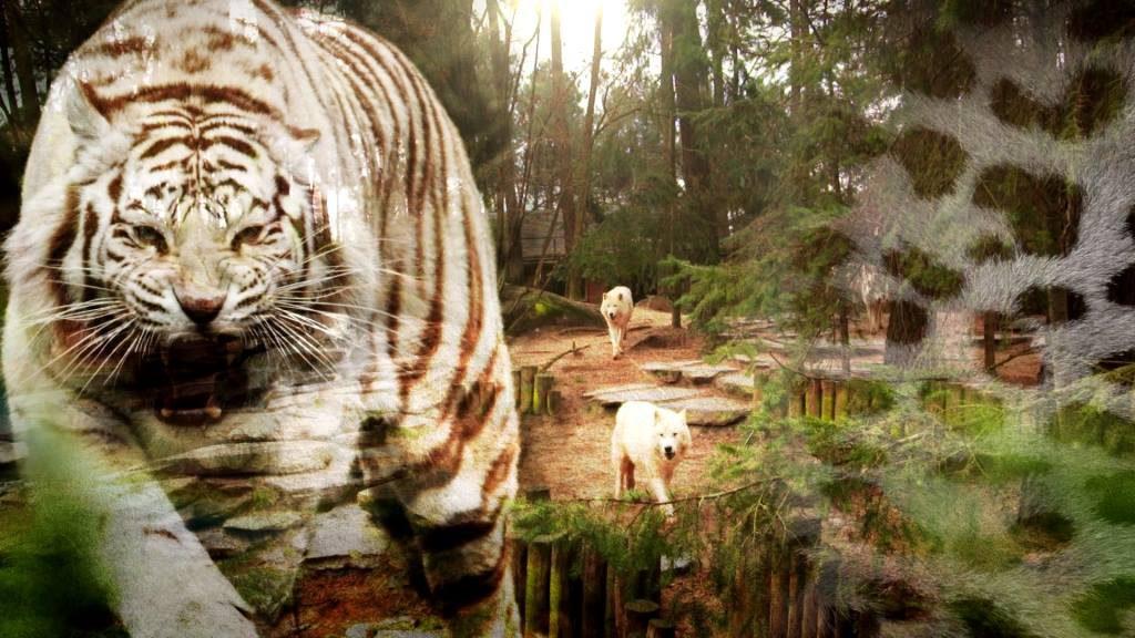 ou-voir-soigneurs-saison-au-zoo