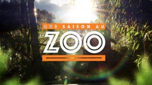 une-saison-au-zoo-saison-6-la-fleche-1